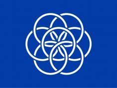 Oficjalna flaga planety Ziemi!