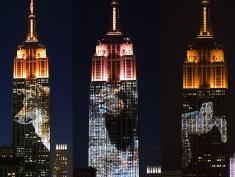Zagrożone gatunki na Empire State Building!
