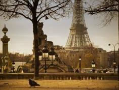 Francja: Wieża Eiffla, bagietki i zamki na Loarą